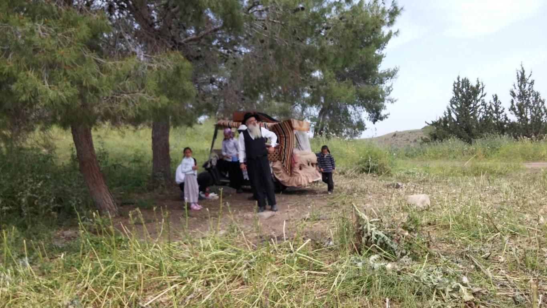 טיול רגלי משפחות ביער מנחמיה