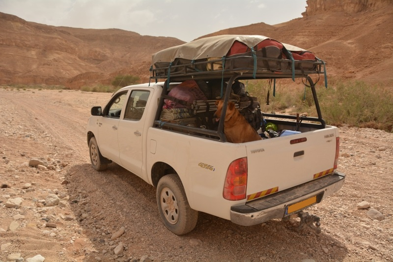 Name:  hilux pickup desert.jpg Views: 3904 Size:  205.9 קילובייט