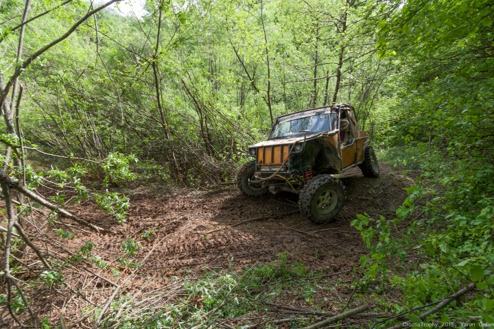 פתיחת מתלים ביער